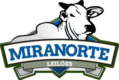Logo Miranorte Leiloes