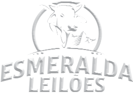 LOGO ESMERALDO LEILÕES